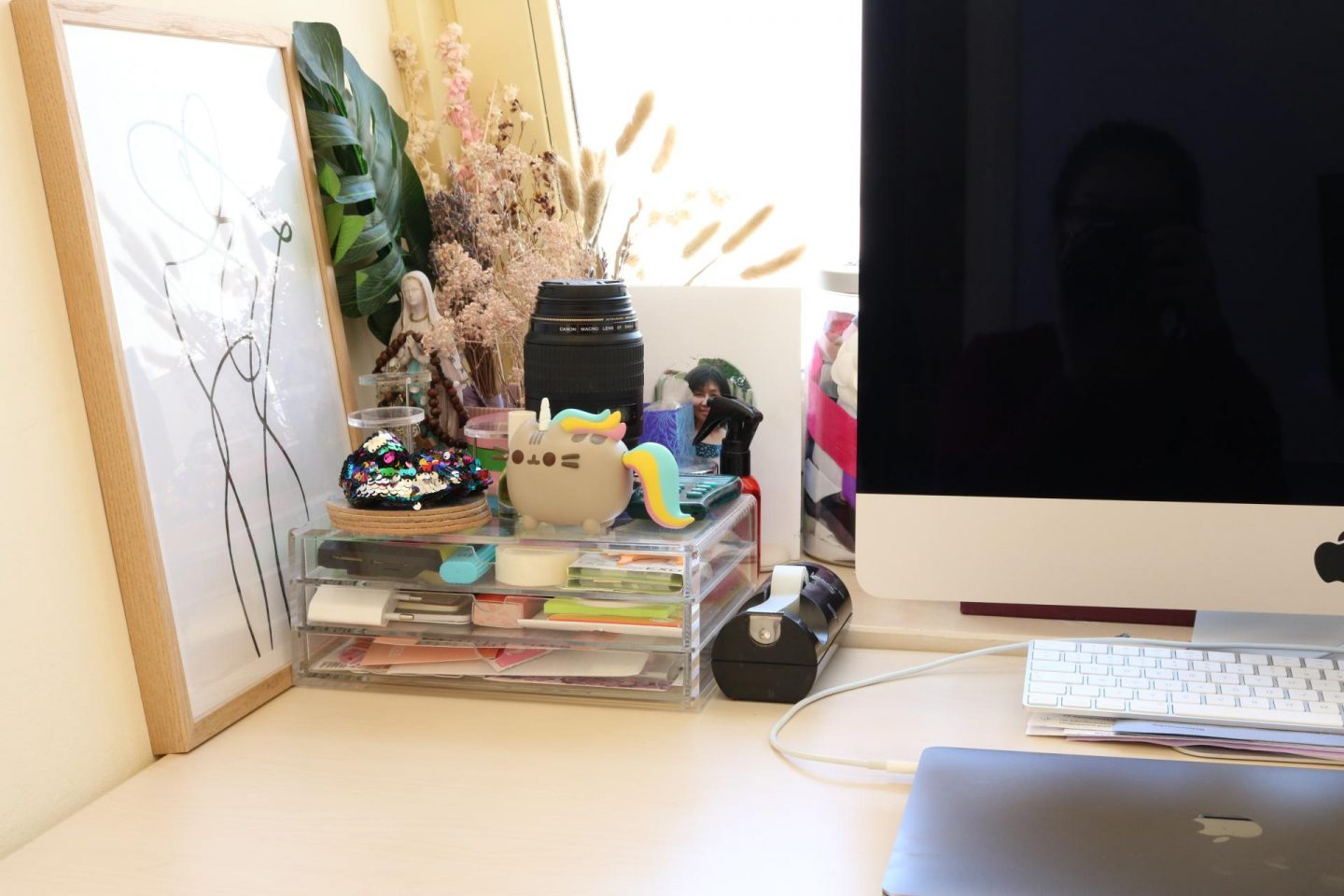 What is on mt desk? Pusheen!